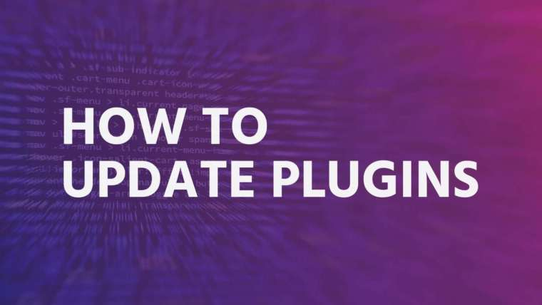 How to update plugins